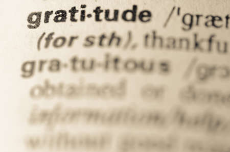 Definition of word gratitude in dictionary Stok Fotoğraf
