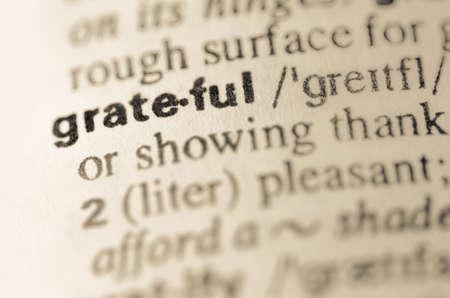 semantic: Definition of word grateful in dictionary