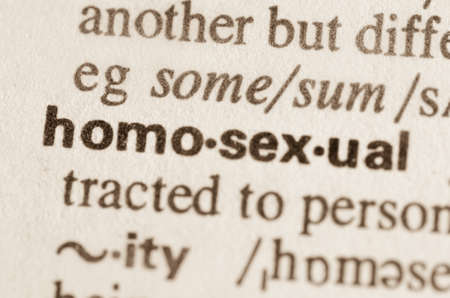 sexual orientation: Definition of word homosexual in dictionary