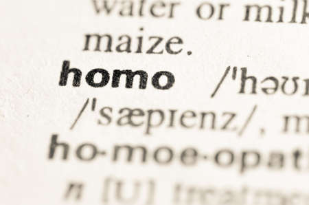 homo: Definition of word homo in dictionary Stock Photo