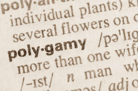 polygamy: Definition of word polygamy in dictionary