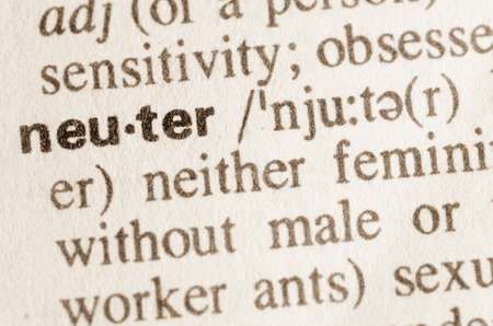 lexical: Definition of word neuter in dictionary