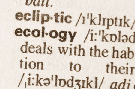 lexical: Definition of word ecology  in dictionary Stock Photo