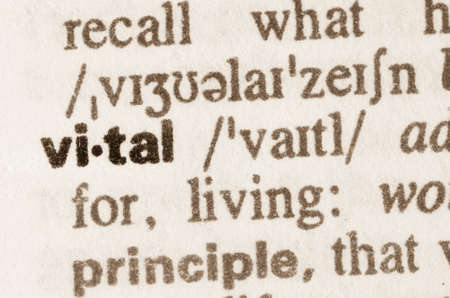 vital: Definition of word vital in dictionary