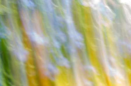 abstract multicolored nature motion blur background photo