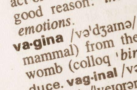 genitals: Definition of word vagina in dictionary
