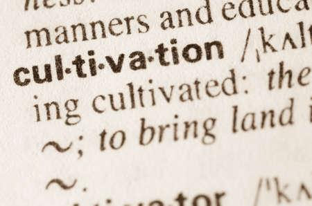 definicion: Definición de cultivo de la palabra en el diccionario