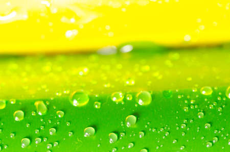 opalescent: defocused green and yellow abstract background with water drops Stock Photo