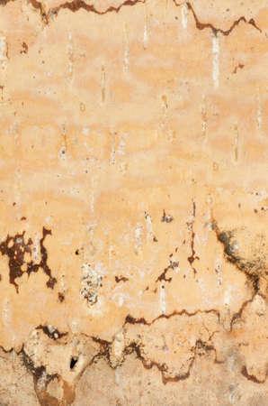 birch bark: closeup to birch bark background texture Stock Photo
