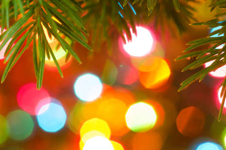 colorful lights: Cristmas tree twig on colorful lights background Stock Photo