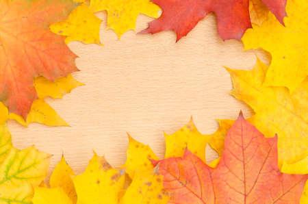 fall leaves frame on wooden background Standard-Bild