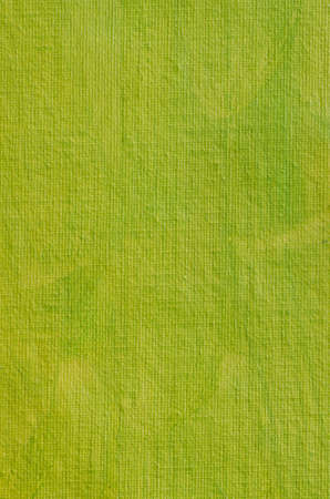 tinge: green painted artistic canvas  background texture with pearly shimmer Stock Photo