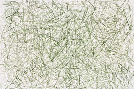 crayon: green crayon doodles on white paper background