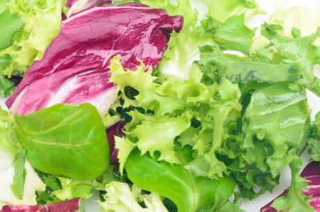 closeup to mixed lettuce salad on plate Stock Photo