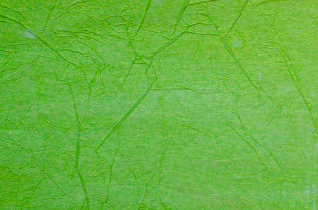 tissue paper: creased green tissue paper background texture