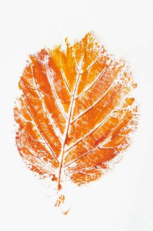 oranje val blad afgedrukt op papier Stockfoto