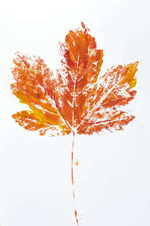 orange fall leaf printed on paper