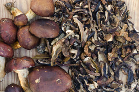 uncultivated: uncultivated edible mushrooms fresh and dried