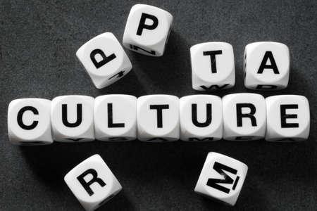 Cultura de la palabra en cubos de juguete blanco Foto de archivo - 78741829
