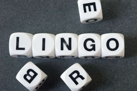 lingo: word lingo on white toy cubes