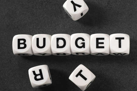 orthography: word budget on white toy cubes Stock Photo