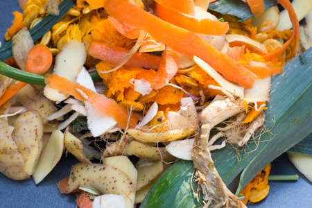 kitchen vegetable peelings and waste for compost