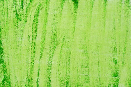 artistic green color pastel on paper background texture