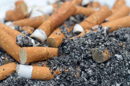 cigarette butts in ashtray macro