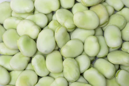 closeup to vicia faba beans closeup
