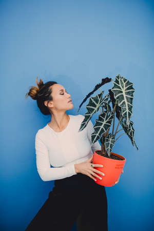 Portrait of beautiful fashion girl with plant on blue background 스톡 콘텐츠