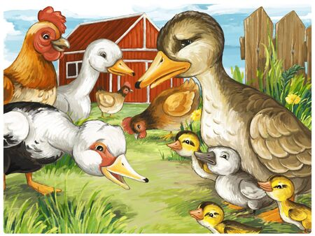 cartoon scene with ducks on the farm and rooster illustration for children