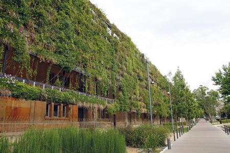 Mur vert dans un bâtiment écologique, l'architecture durable