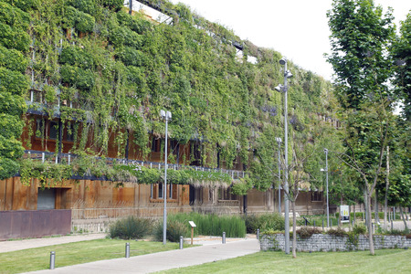 Green wall in an ecological building, sustainable architecture photo
