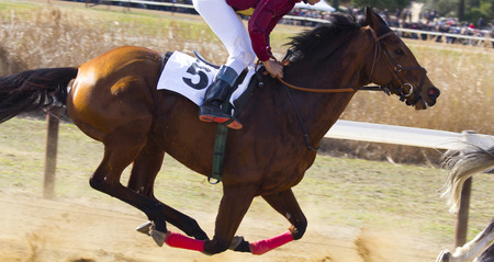 Jockey riding a horse During a race Imagens