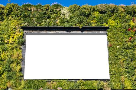 bioedilizia: Cartellone bianco in un edificio verde, per la pubblicit� Archivio Fotografico