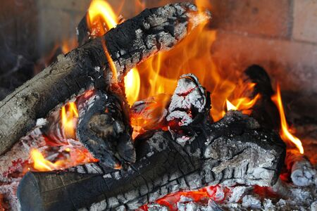 intense: Burning trunks in a intense fire