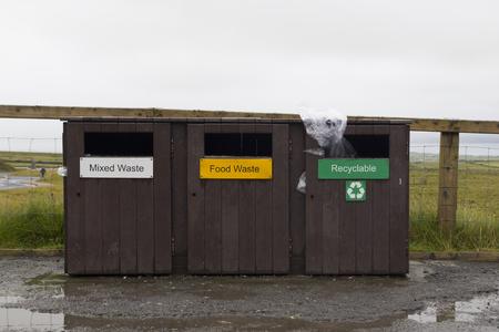 reciclable: Tres cubos de basura para residuos mezclados, comida y reciclable