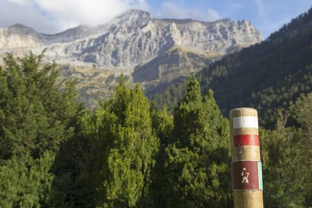 wooden post: Hiking signal in a wooden post, at the nature