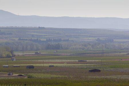 Agriculture champs paysage au printemps Banque d'images