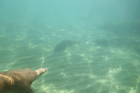 Finger pointing underwater in clear sea