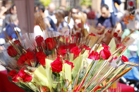 Rozen in Sant Jordi dag, traditionele cadeau in Catalonië, Spanje