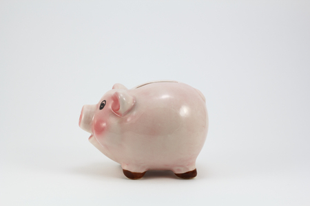 Ceramic pig piggy box, isolated in a white background