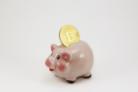 Bitcoin golden coin in a piggy box, isolated pig in a white background Banque d'images