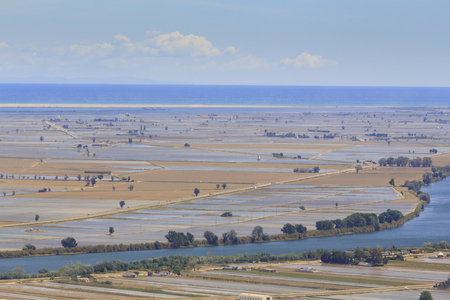 Ebro river and delta, with flooded rice fields in Terres de lEbre in Catalonia, Spain