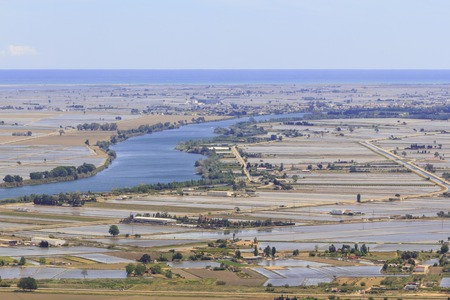 Ebre river and flooded rice fields in Ebro delta, Catalonia in Spain