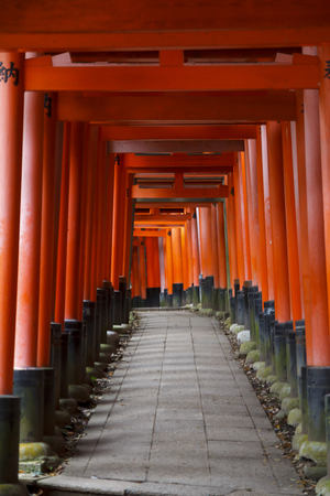 Red torii corridor in Fushimi Inari taisha, Kyoto