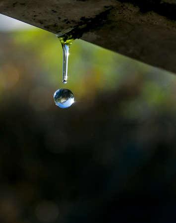 water drop falls