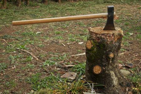 detail of an ax chopping wood