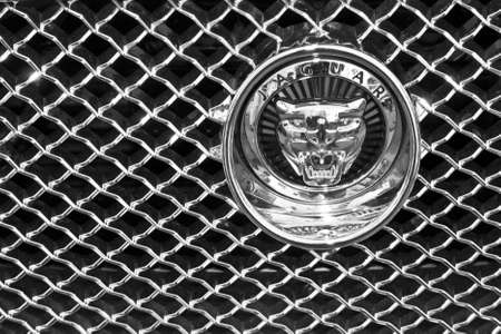 Detail of Jaguar car front.
