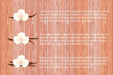 Publicité sur fond de bois avec des fleurs d'orchidées et des gousses de vanille. Illustration vectorielle.